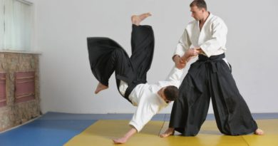Aikido Lessons