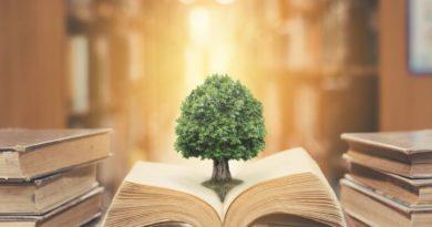 Courses in Environmental Studies