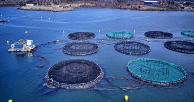 Aquaculture Courses