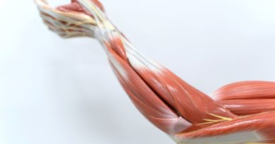 Anatomy and Physiology Courses