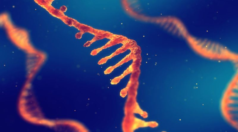 Bioengineering Courses
