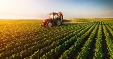 Courses in Agricultural Studies
